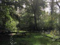 cursuspakket boerbossen oerbos