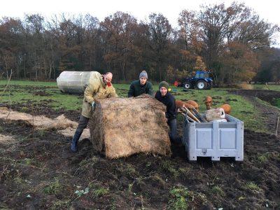 agroforestry cursuspakket praktijk mulchen